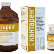 Препараты гомеопатические ветеринарные Кантарен фото