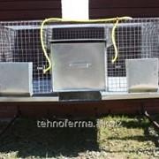 Клетка для кроликов 2-1 с маточниками фото