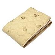 """Одеяло из верблюжьей шерсти облегченное """"Эконом"""", 170*205 см (арт 093) фото"""
