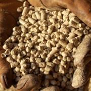 Шрот соевый без ГМО пр-во Россия фото