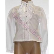 Блуза д/р 14860 фото