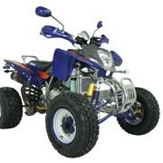 "Квадроцикл ""Bashan"" BS250S-11B фото"