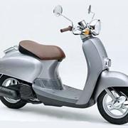 Мопед, скутер ретро Honda Giorno AF 24 фото