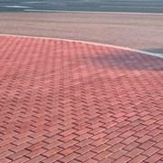 Укладка тротуарной плитки в Московской области цен фото