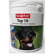 Top 10 Dog фото