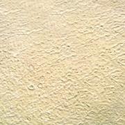 Доломитизированный известняк 3-х стор. обр. шир.30 мм (Без скола) фото