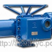 Электропривод AMV 10 230 В фото