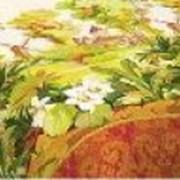 Ткань постельная Бязь 125 гр/м2 220 см Набивная цветной 516-1/S874 ZT фото