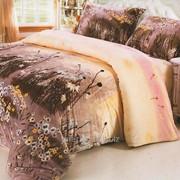 Постельное белье Велюровое 2002 фото