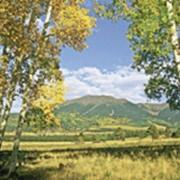 Фотообои Золотая осень фото