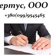 Бухгалтерское обслуживание предприятий (аутсорсинг) и организаций всех форм собственности и правления фото