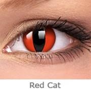 Линзы Crazy INTEROJO Adria Crazy Red Cat фото