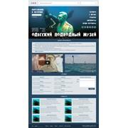 Разработка сайта для одесского подводного музея фото