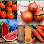 Семена овощных культур в Казахстане фото