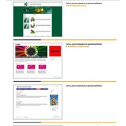 Разработка концепции и структуры сайтов, дизайн и программирование, хостинг и техническая поддержка на своем оборудовании фото