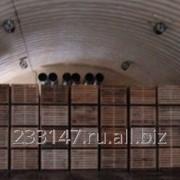 Строительство овощехранилищ (ID: 307822:3065046)