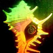 Радужные голограммы фото