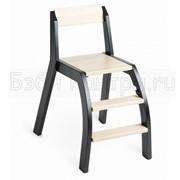 Стульчик для кормления Minui HandySitt Chair фото