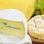 Сыр. фото