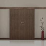 Двери раздвижные Mario Rioli фото