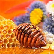 Мед разнотравье цветочный