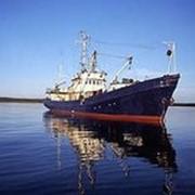 Строительство, ремонт, реновация и модернизация морских и речных сухогрузов фото