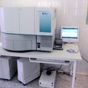 Бактериологический анализ фото
