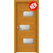 Двери для дома и офиса Поло Дуб фото