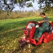 Подбор оборудования под технологию выращивания овощей фото