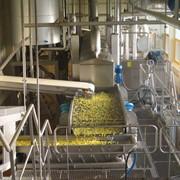 Завод по переработке картофеля в картофель фри фото