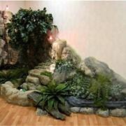 Устройство зимних садов и мини-оранжерей. Оформление зимних садов фото