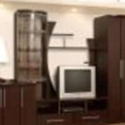 "Зальная стенка ""Сенатор 12"" фото"