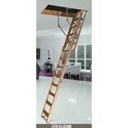 Лестница чердачная Atrium.Материал-Бук. фото