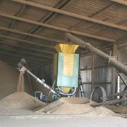 Сушка зерна, Хранение, Чистка зерна и ячменя, Элеватор в Северо-Казахстанской Области фото