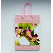 Пакет подарочный, сумочка подарочная, 20см*14см*6см фото