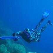Услуги клубов подводного плавания фото