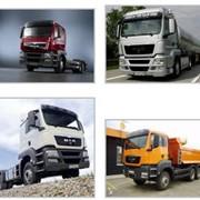 Автомобили грузовые большой грузоподъёмности MAN TGS фото