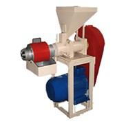 Пресс отжима масла (маслопресс) М8-МПБ 200-300 кг/ фото