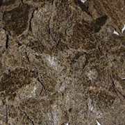 Жмых подсолнечниковый фото