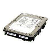 ST373207LW 73-GB U320 SCSI NHP 10K фото