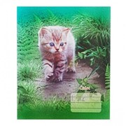 Тетрадь A5, 24 листов, в линейку, цветная обложка CA5L-24CP фото