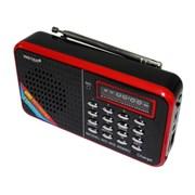 Колонка WS-958 1динам (MicroSD+USB+SD+FM+LCD) черн фото