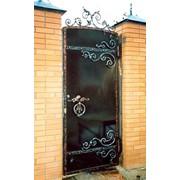 Двери декоративные, художественная ковка фото