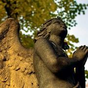 Установка памятников в Вилейке, Молодечно, Мяделе фото