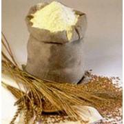 Пшеничная мука 1 сорт, п/п мешок 50 кг. фото