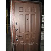дора 3 дверь металлическая