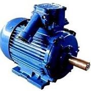 Электродвигатели взрывозащищенные АИМУ 250M6 фото