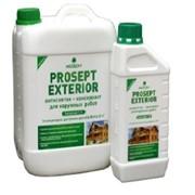 Антисептик для наружных работ PROSEPT EXTERIOR - концентрат 1:19, 5 литров фото