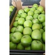 Яблоки Муцу в наличии фото