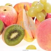 Поставка фруктов и овощей заведениям питания и магазинам. фото